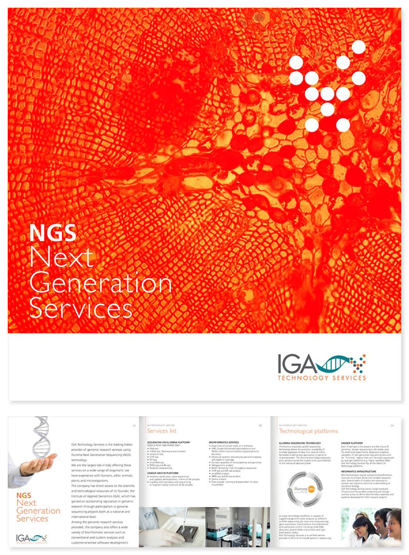 IGA Technology Services